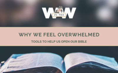 Why We Feel Overwhelmed – Tools to Help us Read our Bibles